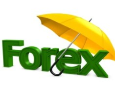 Forex zone trading cards